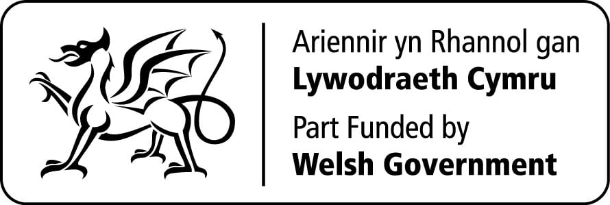 Welsh gov logo