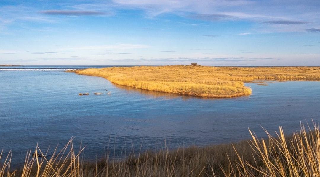 Refill Northumberland Coast