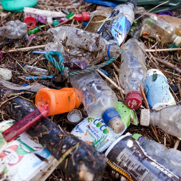 plastic bottles pollution